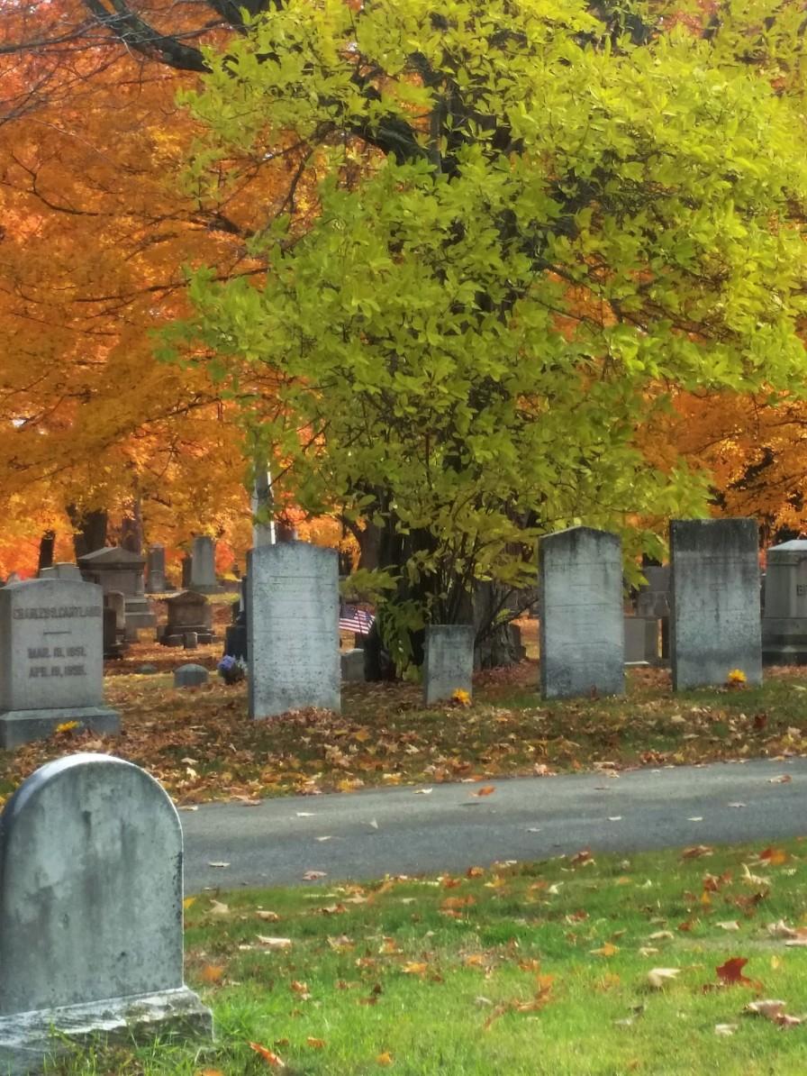cemetery1 (3).jpg