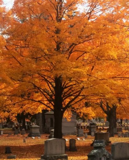 cemetery2-2
